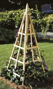 Pyramid Trellis The Perfect Garden Focal Point My